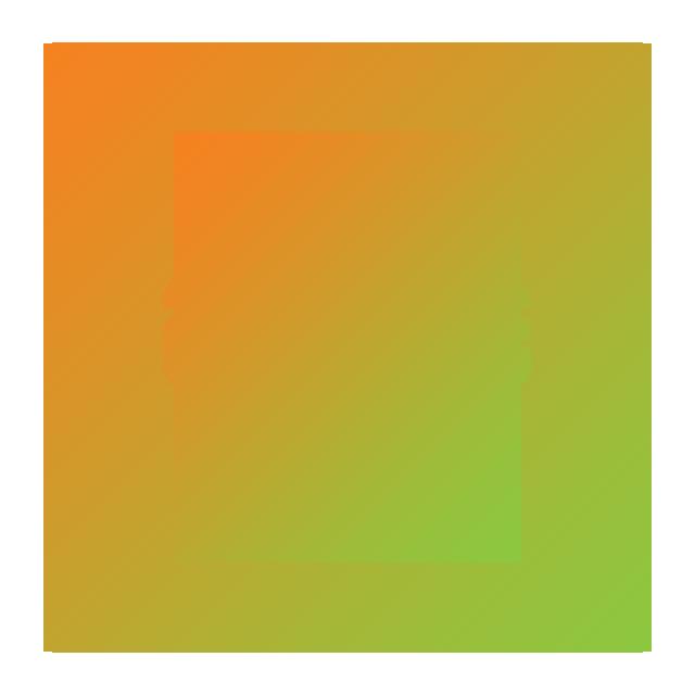 CDM Governing Board